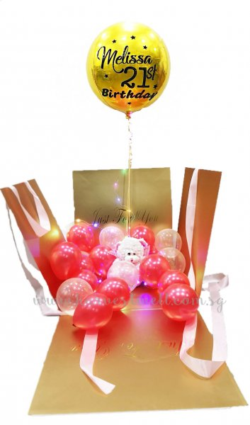 Customize Surprise Balloon Gift Box with ORBZ Balloon