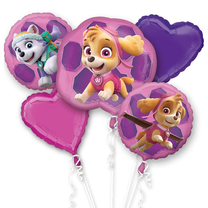 Paw Patrol Skye and Everest Balloon Package