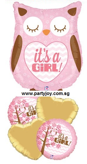 It's A Girl Owl Balloon Package
